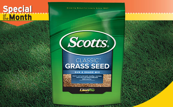 Scotts Classic Sun And Shade Grass Seed