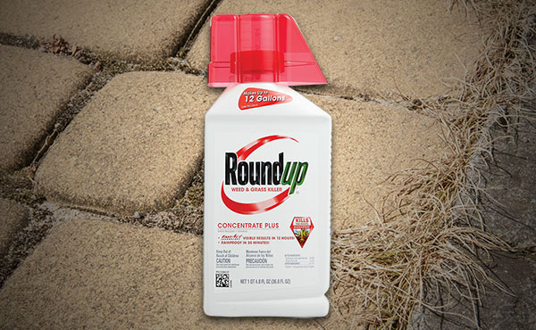 Roundup Concentrate Plus Weed & Grass Killer